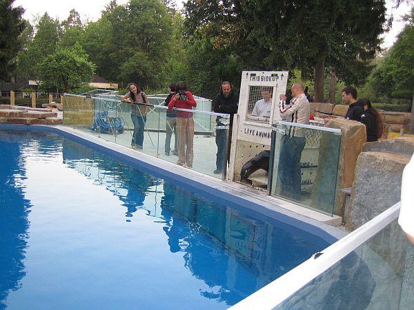 Prvi stik z bazenom