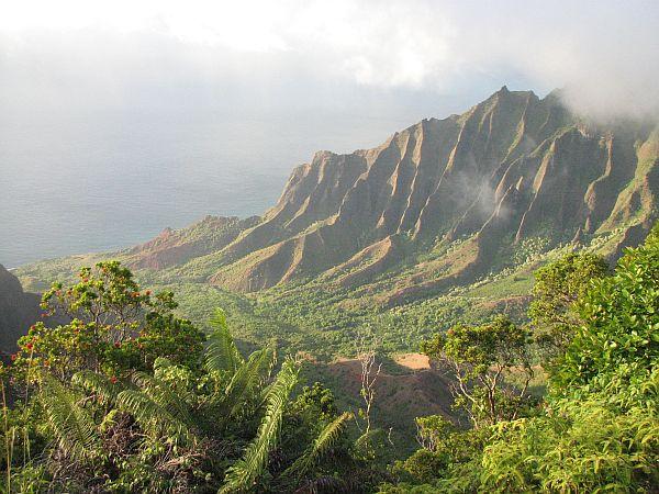 Pogled na dolino Kalalau iz naravnega parka Koke'e