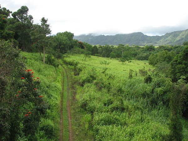 Kauai - 'otok vrtov'