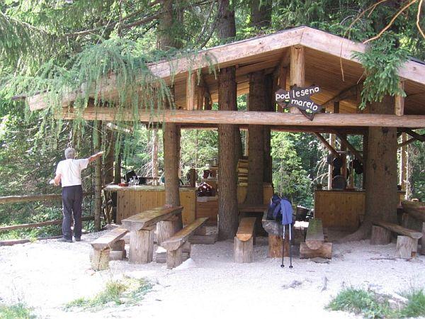 Pod leseno marelo