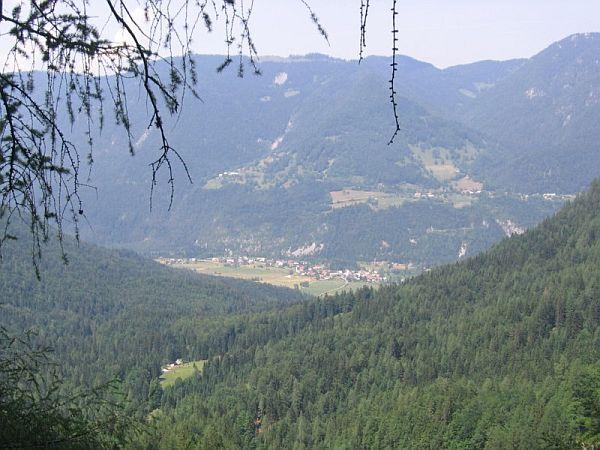 Gozd - Martuljek